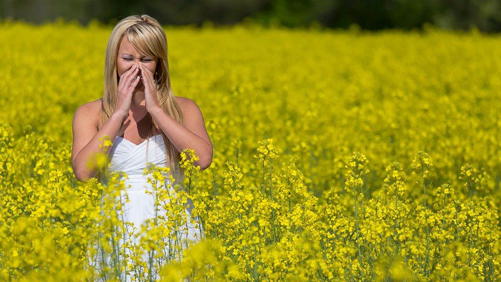 anoiksiatikes allergies